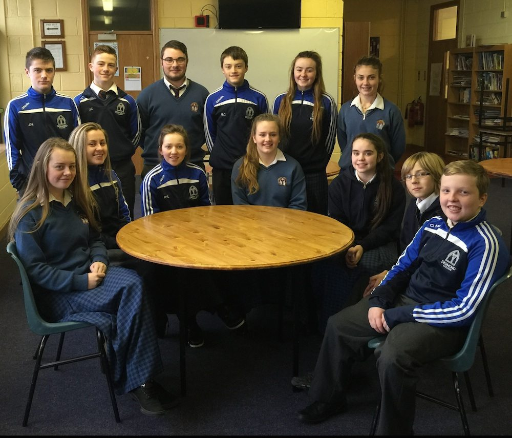 Desmond College Newcastle West, Limerick : Student Council 2015-2016