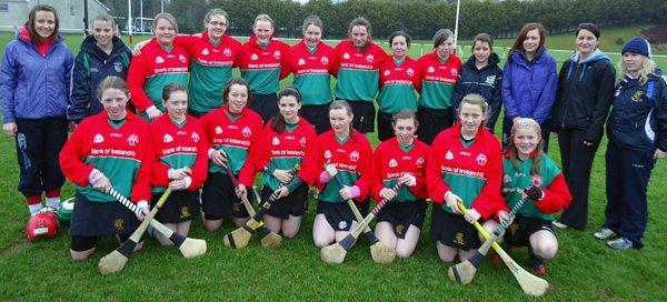 Munster Camogie 2010-2011