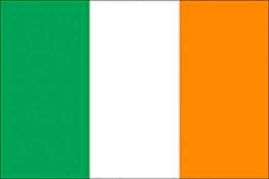 2010-2011 Seachtain Na Gaeilge : Irish Flag