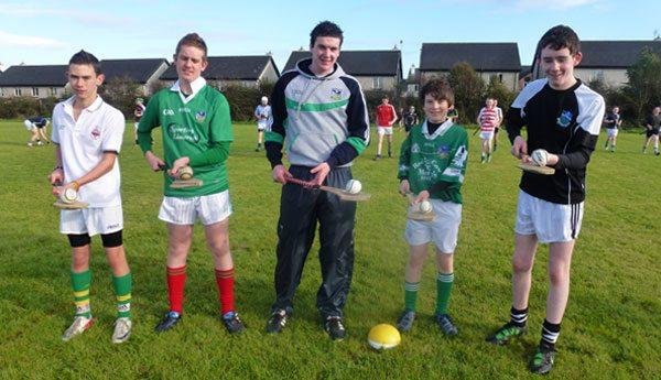 Limerick Senior Hurlers train Desmond College hurlers