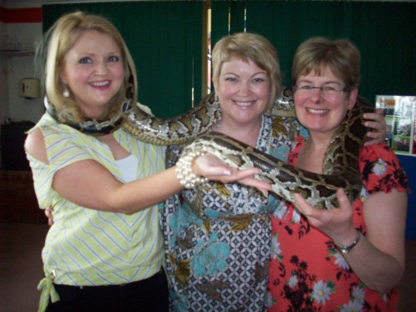 JCSP Desmond College : Summer Celebration : Animal Magic