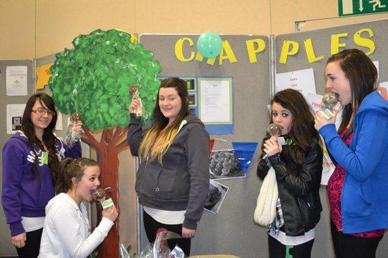 Desmond College Student Enterprise Award 2013 competitors: chapples