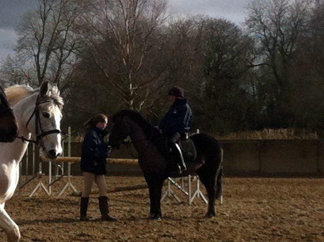 Newcastle West Limerick Desmond College Equestrian Team