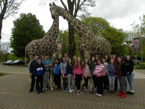 Desmond College's Rang Dearbhla visit Foto Wildlife Park