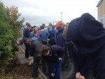 On October 17th Desmond College Students Planted Crocuses for Holocaust Survivors