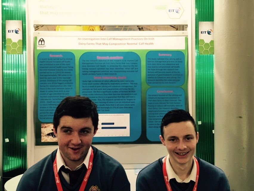 Desmond College Students Enjoying the BT Young Scientist : An investigation into calf management practices on irish dairy farms that may compromise neonatal calf health