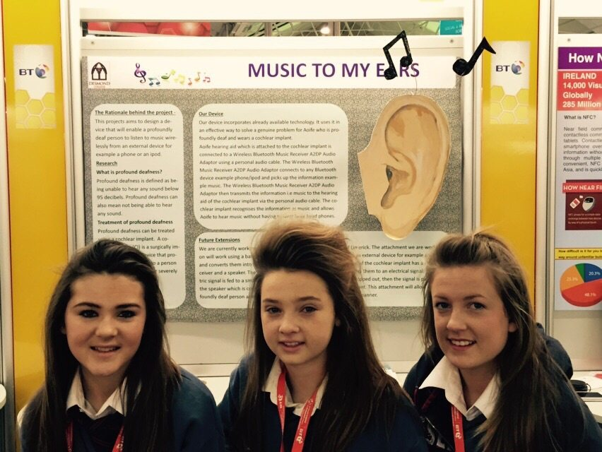 Desmond College Students Enjoying the BT Young Scientist : Music to my ears
