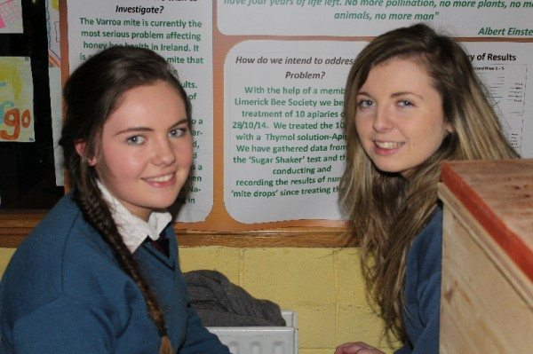 Terri Keane, Juie Cantillon and Ciara Carroll with their project A Statistical investigation into the treatment of the Verroa Mite and its effect on the Native Irish Apis Mellifera