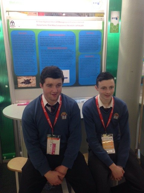 Desmond College Students Enjoying the BT Young Scientist
