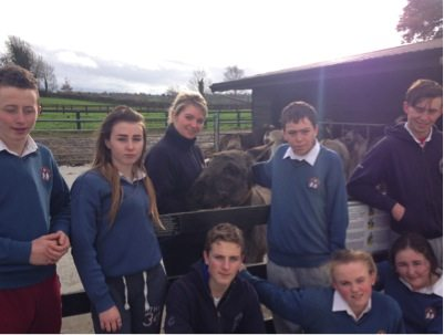 26th Nov 2015: Desmond College Students Adopt a Donkey