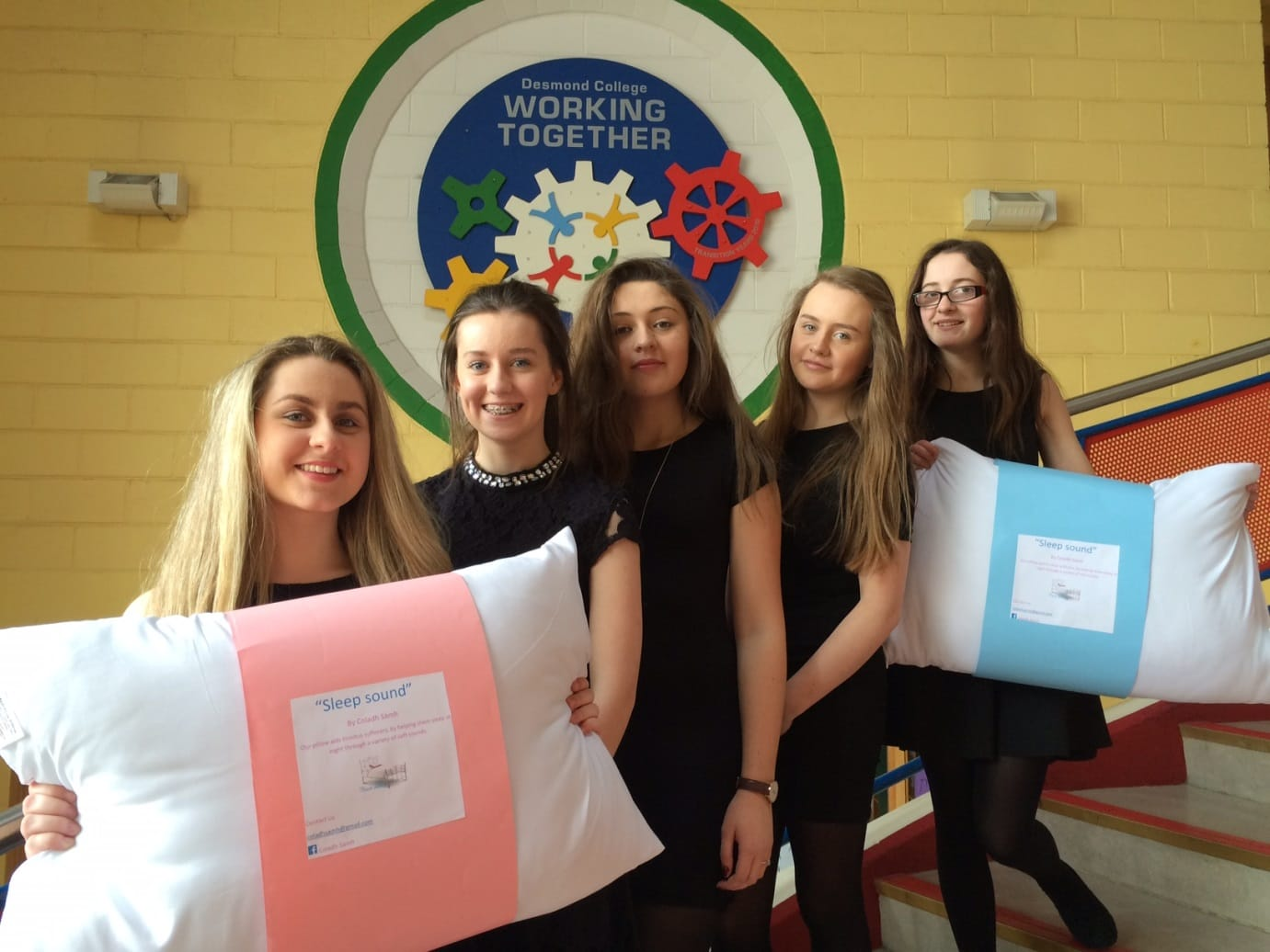 April 2016: Leah Barry, Aine Upton, Muireann Tobin,  Caoimhe Danaher and Sophie Bridgeman came 2nd overall with business Coladh Samh at the Limerick Enterprise Awards