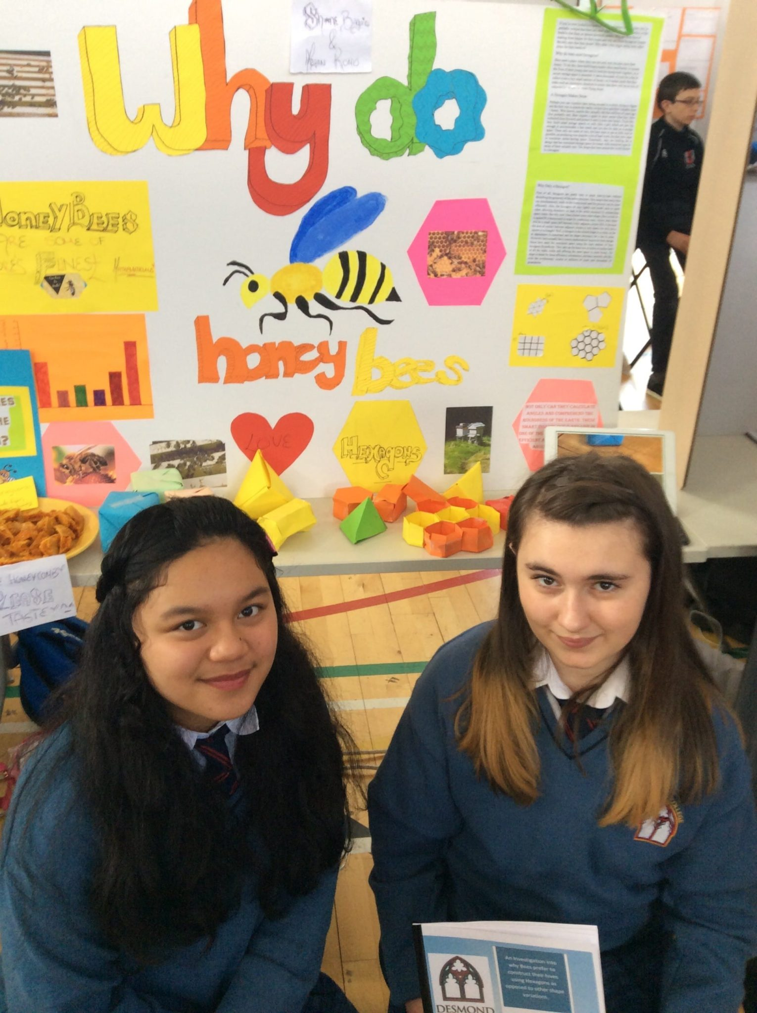 May 2016: First Year Students representing Desmond College in LIT at the 2016 SciFest competition