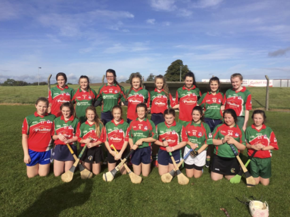30th Sept 2016: Desmond College Post Primary School Senior Camogie Team