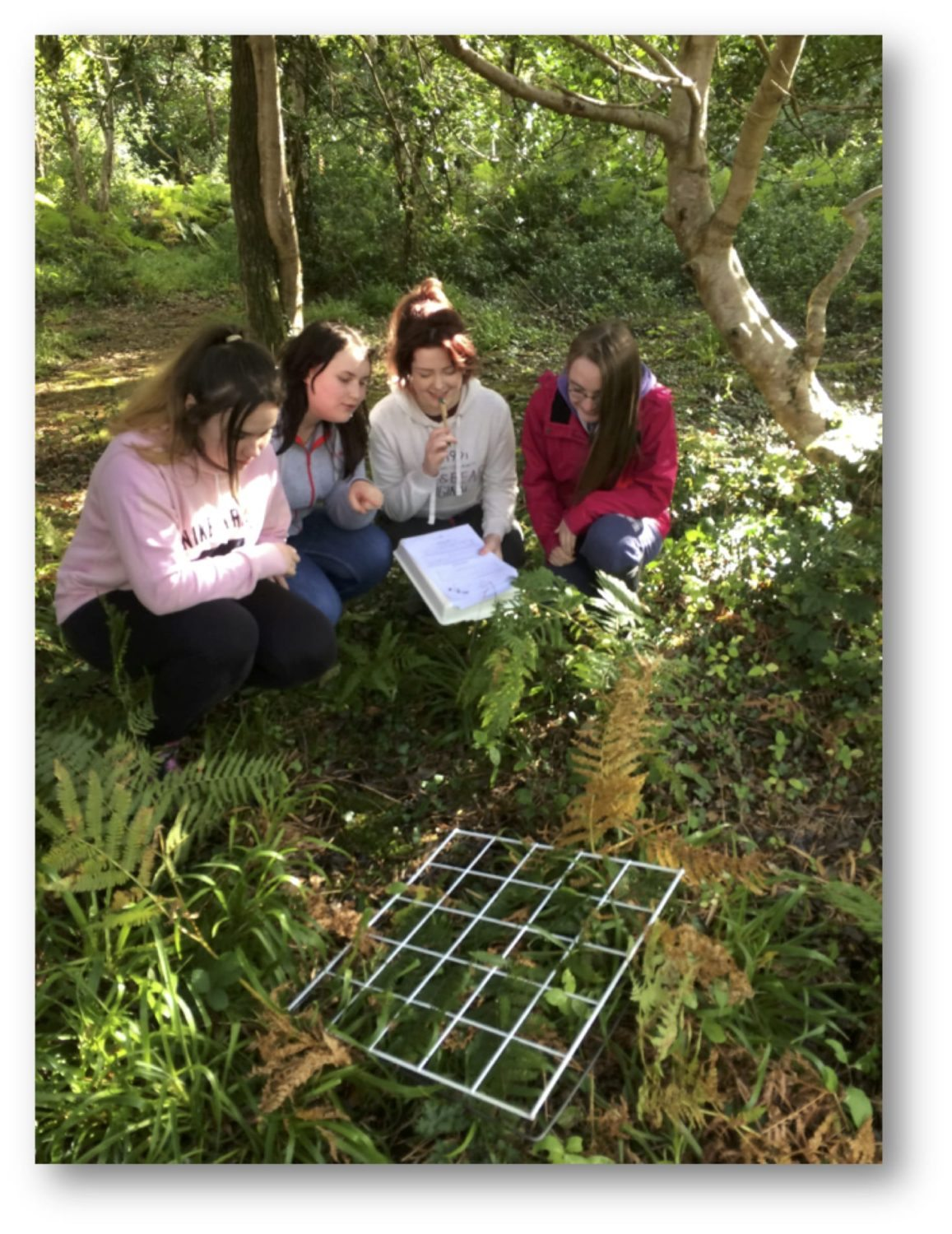 22nd Sept 2016: Chloe Collins, Shannon McKenna, Meaghan Hartigan and Hannah Barrett examine the species present in the habitat using a quadrat
