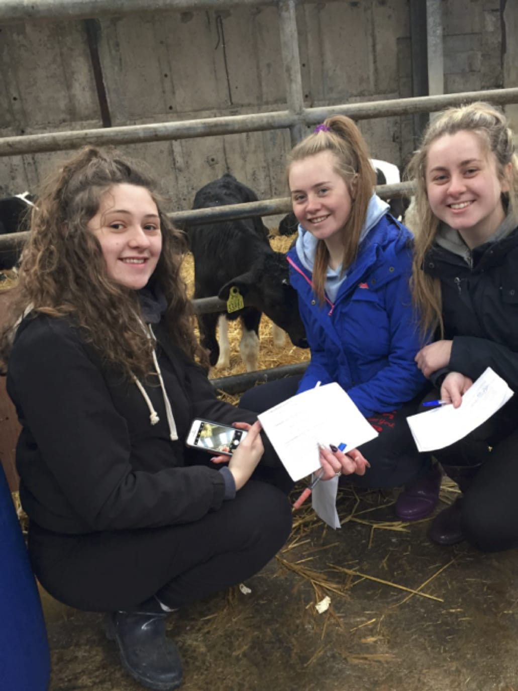 March 2017: Muireann Tobin, Caoimhe Danaher and Leah Barry take note on the Breeds of Animals used in Pallaskenry Agricultural College