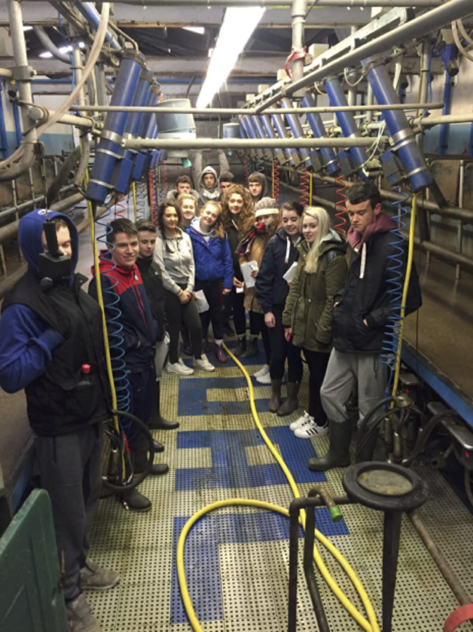 March 2017: Desmond College students analyse the Milking Parlour system used in Pallaskenry Agricultural College