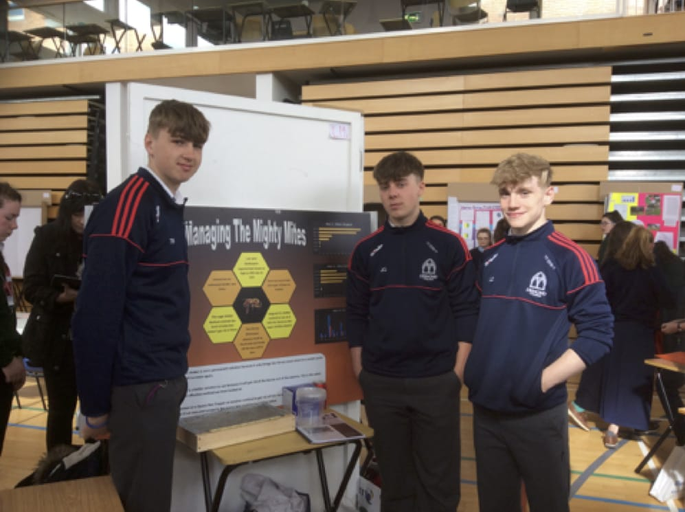 27th April 2017: Post Primary School Limerick Desmond College represents at SciFest2017 with a Project on Bees