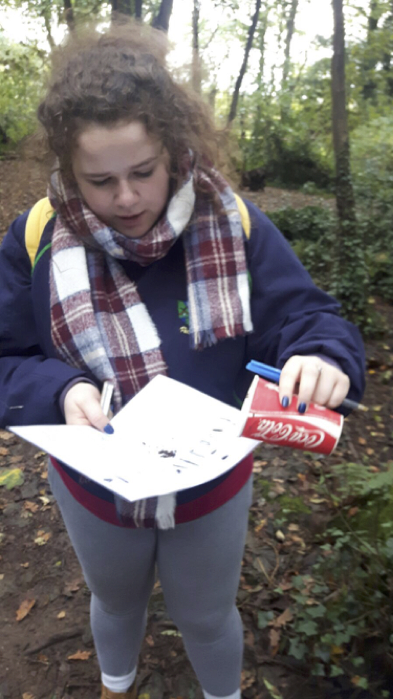 Sept 2017: Desmond College Leaving Certificate studenta assesses the insects she found in the habitat at Foto WildLife Park