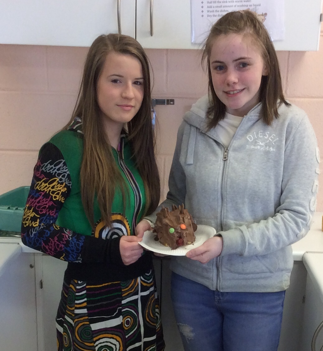 March 2018: Desmond College 2nd Years Celebrating International Home Economics Day 2018 by baking Novelty Cakes