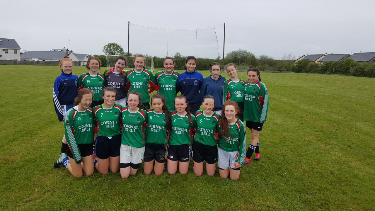 May 2018: Desmond College Team who won the shannon side league