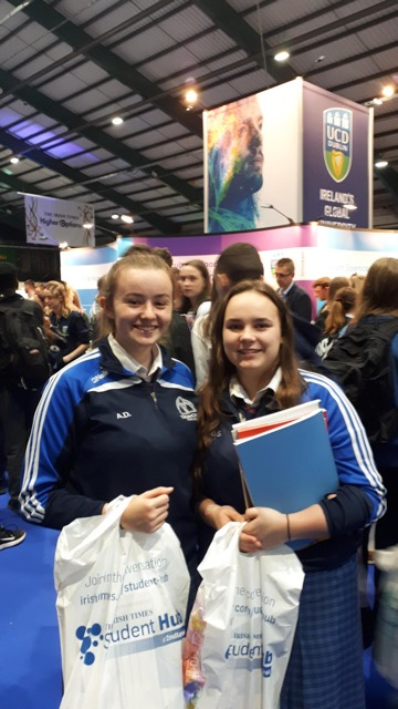 Sept 2018: Desmond College 6th year students enjoying the Higher Options conference
